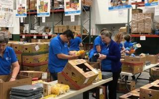 people sorting through food donations in a warehouse.