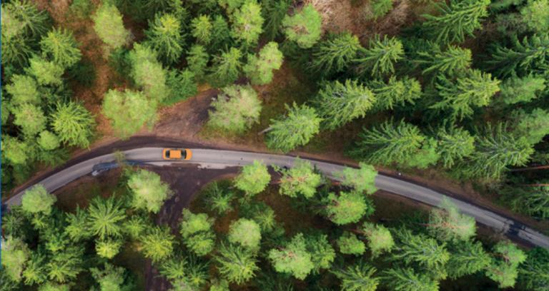 Aerial view of car driving on single curved road through forested area.