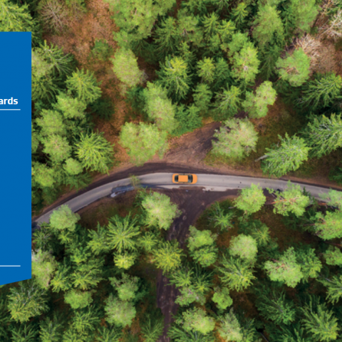 Aerial view of road through forested area with blue quad.